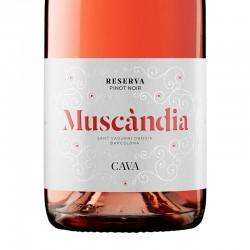 Muscàndia Rosé Reserva sparkling wine