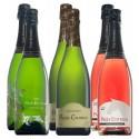 Pagès Entrena sparkling wine pack