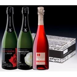 Conde de Valicourt sparkling wine pack - 3