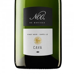 Fermí Bohigas Noa Reserva sparkling wine