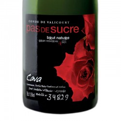 Conde de Valicourt Pas de Sucre Brut Nature Gran Reserva sparkling wine
